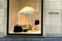 STORE FRONT & DISPLAYS / by Angie Stelnicki