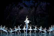 2011-2012 Season / Colorado Ballet's 2011-2012 season included Swan Lake, The Nutcracker, Peter Pan and Tribute  / by ColoradoBallet