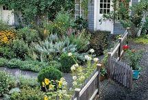 Garden Spots / by Shari Gudlaugson