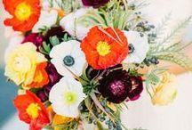 Wedding  / by Elizabeth Clark