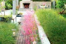 Gardens / by Elizabeth Clark