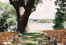 Dream Wedding / The perfect day