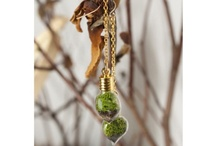 Gifts / by Chicago Botanic Garden