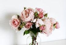 Love / A celebration of love!