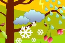 Seasonal Infographics from the Chicago Botanic Garden / Infographics by the Chicago Botanic Garden based on the science of the seasons. / by Chicago Botanic Garden