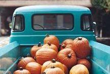 Autumn Inspiration. / Pretty fall leaves, pumpkins, cider mills, cinnamon spice...all things autumn!