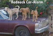 Addicted to Rednecks / by Kathy Westaby
