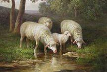 Sheep Goodness