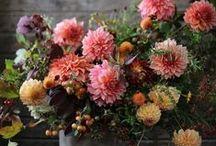 flowers / creative floral arrangements  www.midlifemodernstyle.com