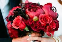 Ravishing Reds Bouquet Ideas / by Flowers by Brian Wedding Flowers