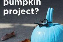 TEAL Pumpkin Project.