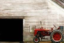 Barns / by Lise Sue Wachtman Delawder