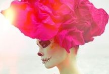 Skulls Etc. / Day of the Dead / by Cathryn Bay-Fowler
