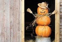 Thanksgiving/Fall stuff / by Amanda Tissue