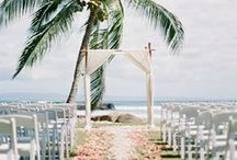 Wedspiration / by Carrie Johnson
