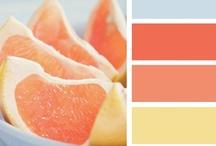 | colorindo | Design Seeds | / Design Seeds - site: http://design-seeds.com/ / by Cris Monteiro