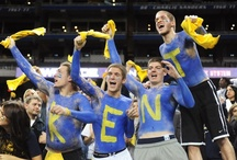 Get Your Gold On / Kent State athletes (and their opponents) are greeted by a frenzied sea of blue and gold at athletic contests throughout the year as Kent State students and alumni cheer their Golden Flashes on to victory.  / by Kent State University