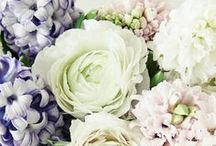Flowers <3 / The beauty of natural, fresh flowers