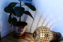 Lighting / by rachel marie damiano