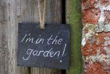 Garden Dreams / by Kim Wagner Hansen