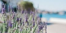 Phos Workshop / Photography Workshop: Phos. An amazing experience in Spetses, Greece.