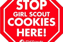 Girl Scout Ideas / by Sheila Stringer