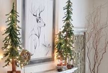 The Holiday Decor / by Taylor Roddy