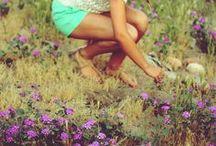 Summer Breeze  / by Krista Richardson