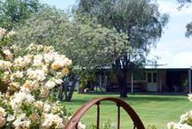 Take Me To The Wedding /  Margaret River Wedding Venue Locations - Ceremony,Reception and Photography.