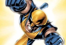 Fandom: Wolverine / He's the best there is at what he does.
