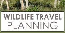 Wildlife Travel Planning / All you need to plan for an incredible wildlife encounter. Best places to see animals in the wild, when to go see them, and incredible itineraries so you can make the most of your trip.