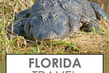 Florida Travel / Florida never gets old! Explore the sunshine state coastline, from beaches to mangroves. Road trip along the Florida Keys, and party in Miami.