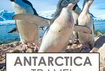 Travel to Antarctica / Travel to Antarctica through our selection of travel tips, stories, and photo essays.