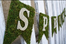 Signs of Spring / by Polka Dot Design