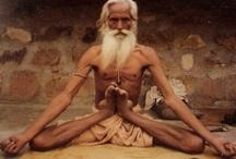 yoga love / ...and meditation inspiration / by Jamie Varga