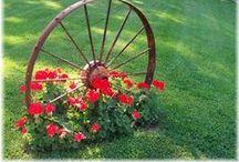 Gardening & Outdoors / Garden ideas, design, landscaping - vistas, plants, bird baths, garden ornaments, container planting.