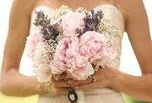+Pastel Weddings+ / https://www.facebook.com/SofiasDream / by Sofia's Dream