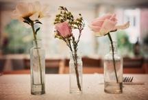 +Chabby Chic Weddings+ / https://www.facebook.com/SofiasDream / by Sofia's Dream