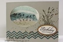 Stampin Up 2014-2015 / by Sandra Frutchey