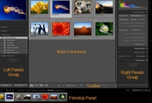 Photoshop & Photography Tips