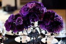 Purple Wedding Theme Inspiration