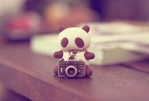 I. Love. Pandas. Duh.