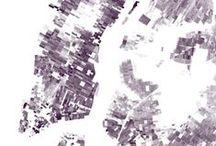 Geospatial / Maps!  / by Catherine Madden LLC