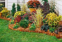 Landscaping/ Green Thumb