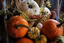 Autumn/Thanksgiving / by Laurette Conkling Walton