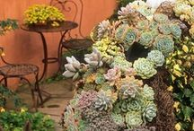Plants indoors and out / by M. Easterling