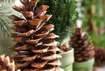 Christmas is Coming / Ideas for Christmas décor and entertaining