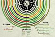 Charts / by Mandala CCeron