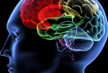 Brain Power / Brain cells, Open Mind, Matters of the Mind, The Mind Matters, Think, Wandering Mind, Brain Chemistry, This is your Brain on...