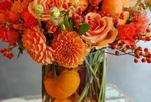 Fall/Thanksgiving Ideas / by Kathy Lovko